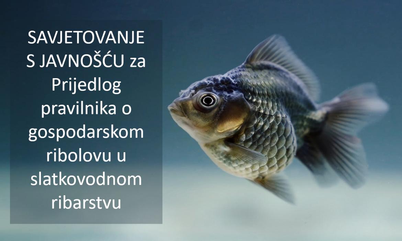 Otvoreno je savjetovanje s javnošću za Prijedlog pravilnika o gospodarskom ribolovu u slatkovodnom ribarstvu