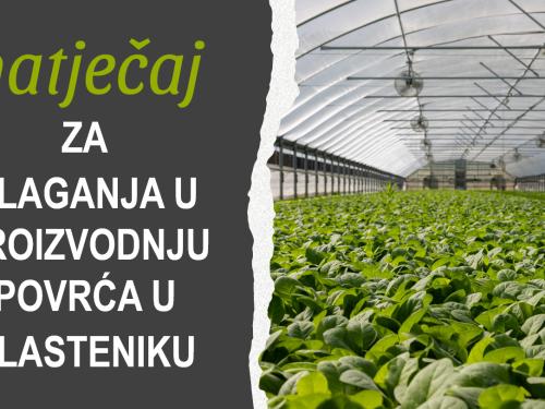 Natječaj za ulaganja u proizvodnju povrća u plasteniku