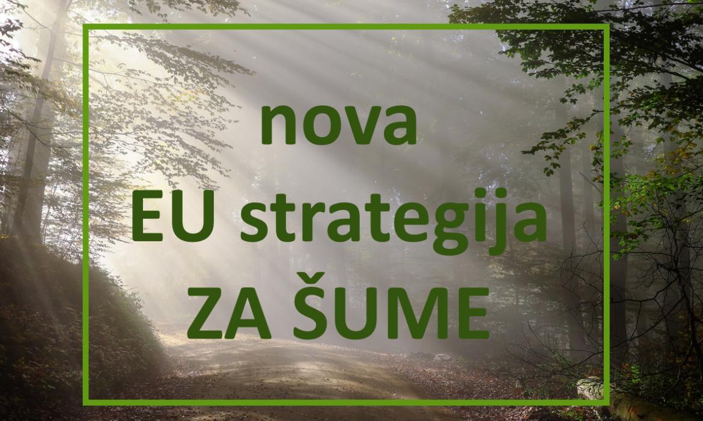 Nova strategija EU za šume- komentari do 4.12.