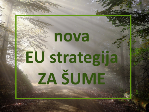 Nova strategija EU za šume- komentari do 4.12.